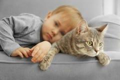 可爱的小男孩特写镜头有逗人喜爱的猫的在灰色扶手椅子 库存图片