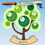 可爱的平的设计infographic与树元素 免版税库存图片