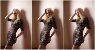 可爱的性感的金发碧眼的女人在动物印刷品中短小紧紧适合了诱惑摆在室内的礼服 肉欲的妇女画象,室内 库存照片