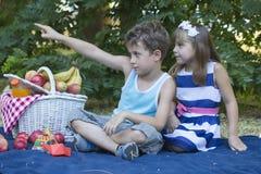 可爱的愉快的孩子户外在夏日 图库摄影