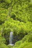 可爱的暗藏的瀑布在法希尔斯新泽西 免版税库存图片