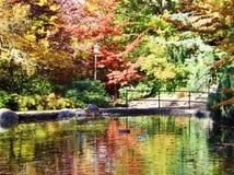 可爱的氧化锂公园在秋天的俄勒冈 免版税库存图片