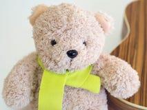 可爱的熊玩偶和柠檬色围巾 图库摄影