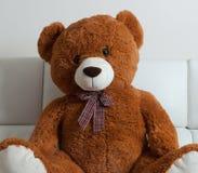可爱的玩具熊坐沙发 图库摄影