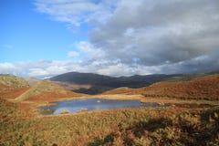 可爱的百合Tarn.Loughrigg落, Cumbria,英国。 免版税库存照片