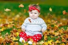 可爱的矮小的女婴在秋天公园在与橡木和枫叶的晴朗的温暖的10月天 免版税库存照片