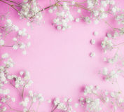 可爱的矮小的白色麦在桃红色背景,相当花卉框架,顶视图开花 图库摄影