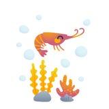 可爱的虾字符 库存图片
