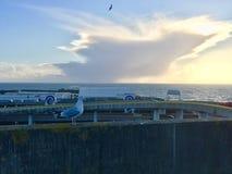 可爱的观点的在布赖顿码头手段的鸽子 免版税库存照片