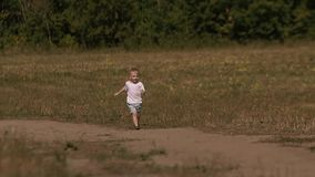 可爱的金发男孩飞行在绿色领域的一只五颜六色的风筝 股票视频
