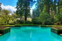 可爱的水池在庭院里在Lakewood庭院里 免版税库存照片