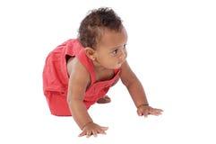 可爱婴孩爬行 免版税库存照片