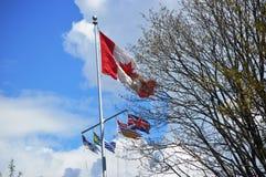 可用的加拿大标志玻璃样式向量 免版税库存图片