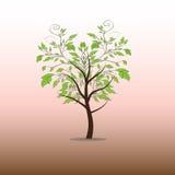 可用的文件例证结构树向量 图库摄影