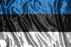 可用的爱沙尼亚标志玻璃样式向量 在背景的旗子 免版税库存图片