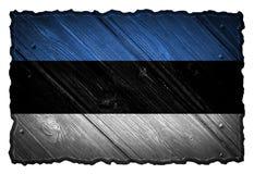 可用的爱沙尼亚标志玻璃样式向量 免版税库存图片