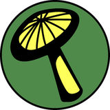 可用的通配文件医药蘑菇的向量 免版税库存照片