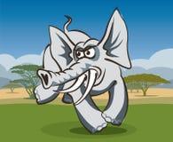 可笑大象在非洲 免版税库存图片