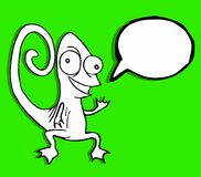 可笑的变色蜥蜴 库存图片