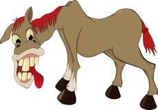 可笑的马 免版税库存图片