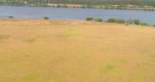 可耕的从飞行quadcopter的landon伏尔加河鸟瞰图在森林 股票视频