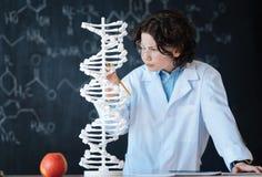 可胜任的年轻研究员探索的染色体组的在实验室里 免版税库存照片