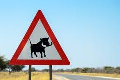 可能的warthog横渡的标志 免版税库存照片