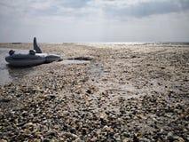 可膨胀的玩具-鲨鱼-在海边 免版税库存照片