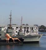 可膨胀的章鱼在悉尼港口 库存照片