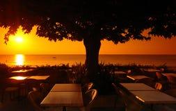 可西嘉岛地中海餐馆海运 库存照片