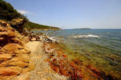 可西嘉岛法国横向 免版税库存图片