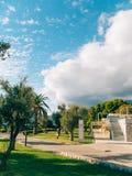 可西嘉岛海岛地中海掌上型计算机摄影被采取的结构树 日期树在黑山 图库摄影