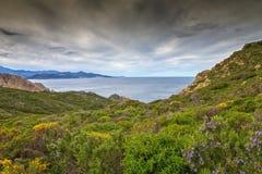 可西嘉岛的Maquis和海岸线 库存图片
