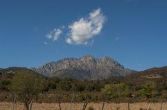可西嘉岛,登上Cinto,狂放的风景,欧特Corse,上部Corse,法国,欧洲, Haut Asco, Asco谷,可西嘉岛的高中心 免版税库存图片