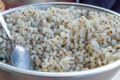 可贵煮沸的小米的五谷 免版税库存图片