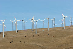 可选择能源涡轮风 库存照片