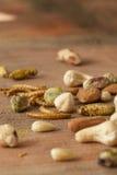 可食的昆虫和坚果 免版税图库摄影