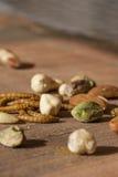 可食的粉虫和坚果 免版税库存照片