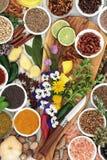 可食的花和草本和香料调味料 免版税库存照片