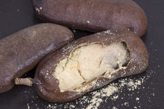 可食的jatoba果子 库存照片