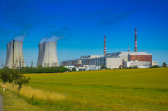 可更新的绿色能量的概念:一棵雏菊和草在残破的核能的标志 图库摄影