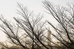 台北冬天场面 库存图片