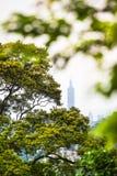 台北市视图 库存图片