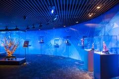 台北101种塔旅游购物中心红珊瑚工艺在台湾显示 免版税图库摄影