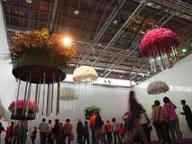 国际兰花展示在台湾 免版税库存照片
