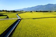 台湾农村风景 免版税库存照片