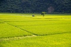 台湾农村风景 图库摄影
