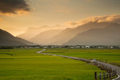 台湾的美丽的乡下 免版税库存照片