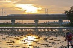 台湾高速路轨和农田 图库摄影
