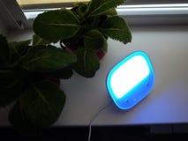 台灯在家 使用为点燃各种各样的表面,LED电灯泡 图库摄影